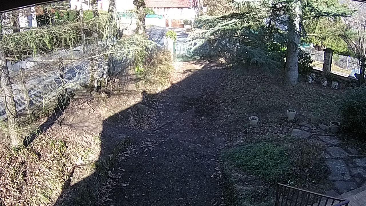 Webcam Allee